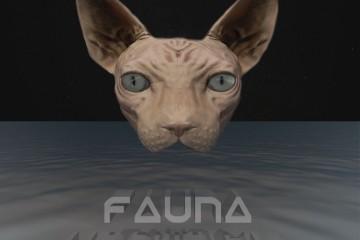 d4aa-udown-kit-le-nouvel-ep-de-fauna-nous-donne-confiance-en-son-avenir
