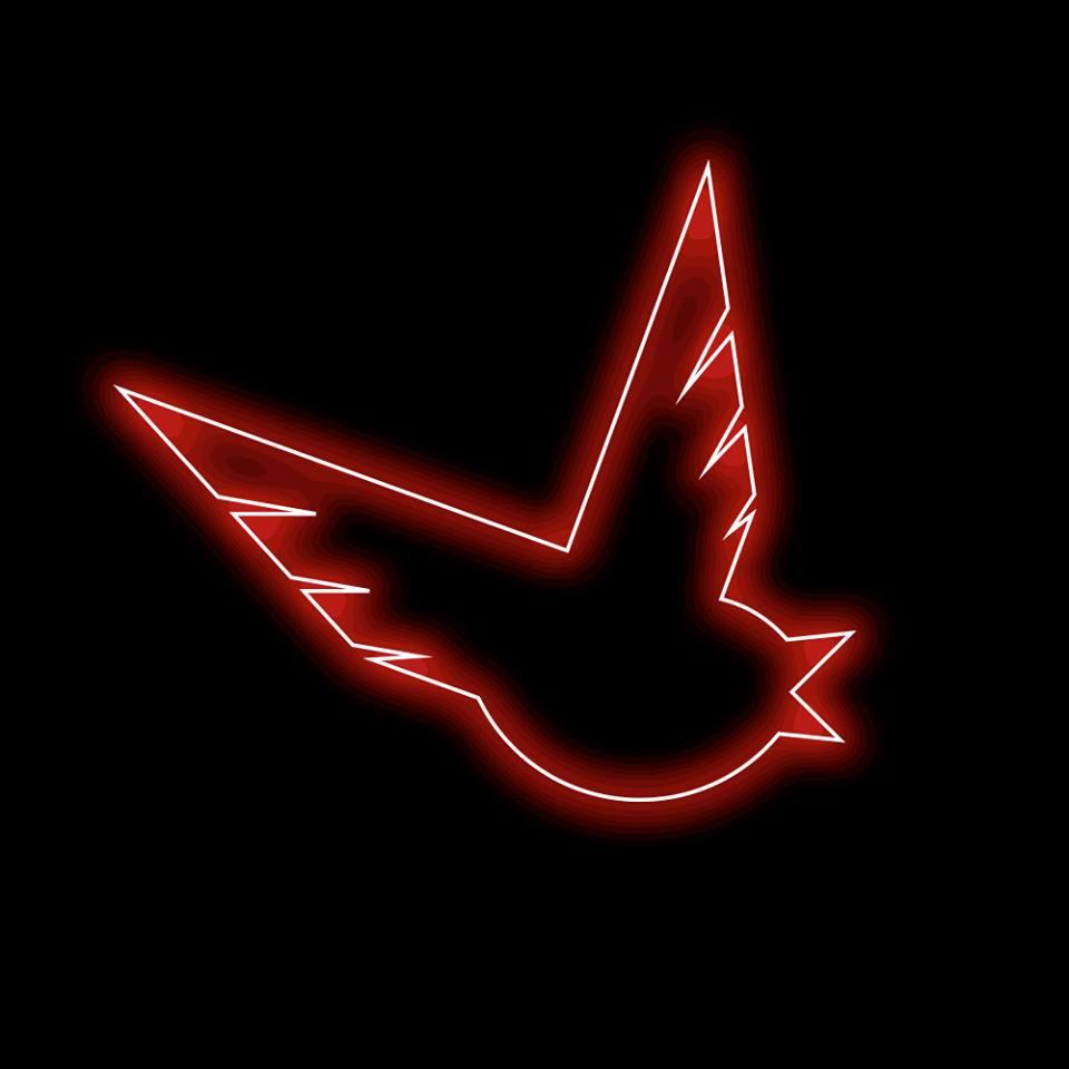 BirdyNamNam_logo