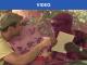 togosoul70_teaser_header