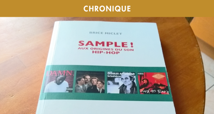 BRICE MICLET : SAMPLE ! AUX ORIGINES DU SON HIP-HOP