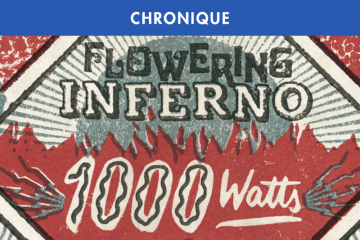 QUANTIC PRESENTS FLOWERING INFERNO : 1000 WATTS